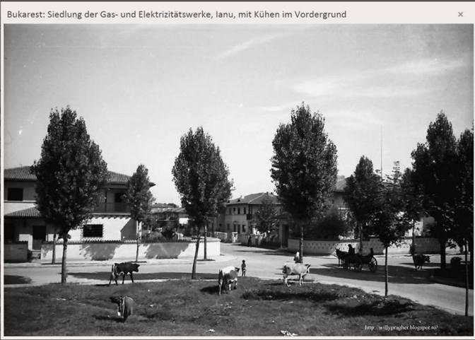 Primaverii Quarter, in the 1930's